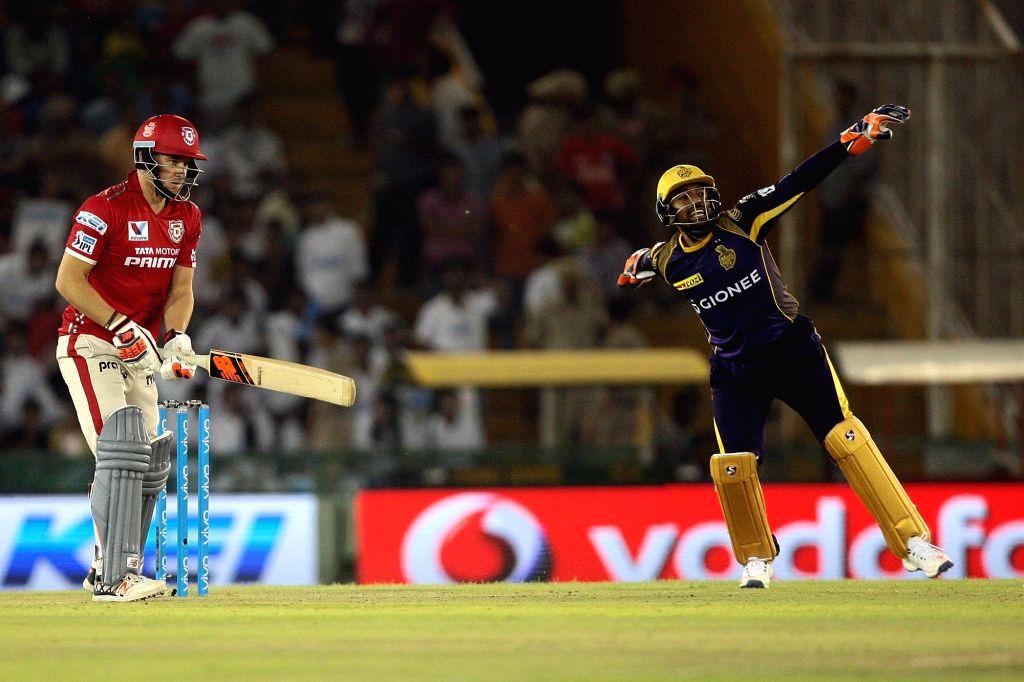 An action moment during an IPL match between Kings XI Punjab and Kolkata Knight Riders at Punjab Cricket Association IS Bindra Stadium in Mohali on April 19, 2016.