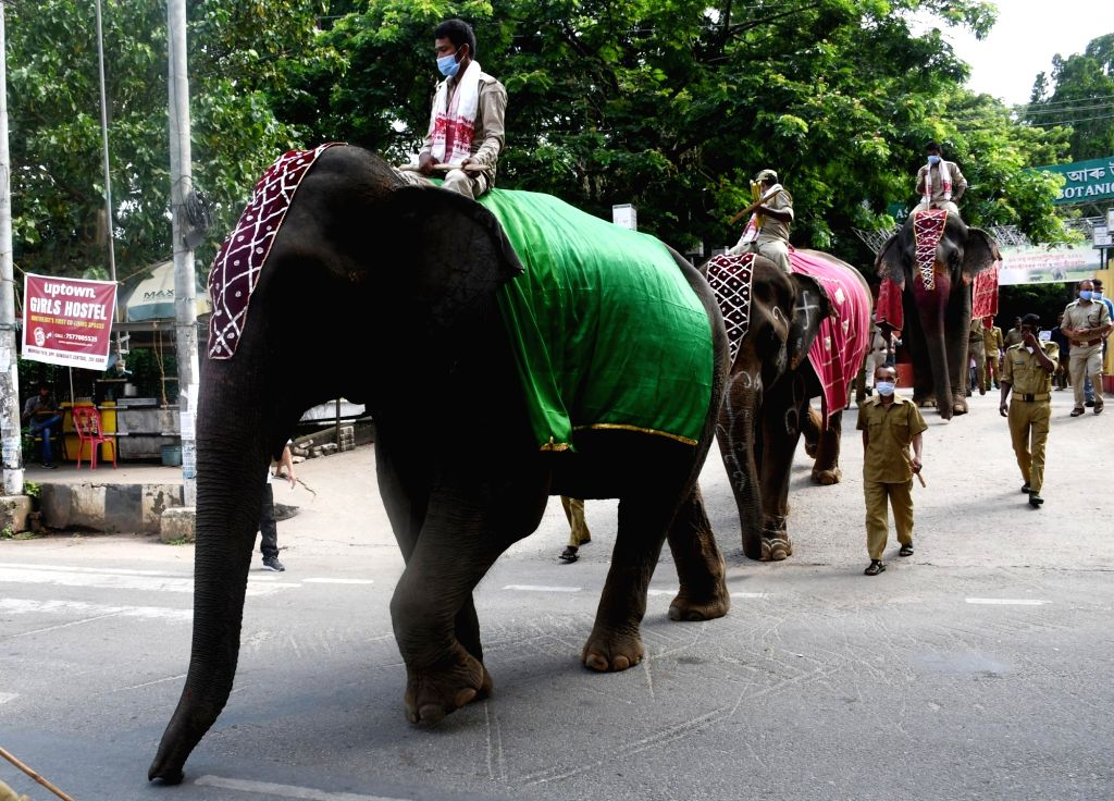 An elephants' rally being taken out as part of the Wildlife Week 2021 celebrations in Guwahati on Saturday, Oct. 2, 2021.