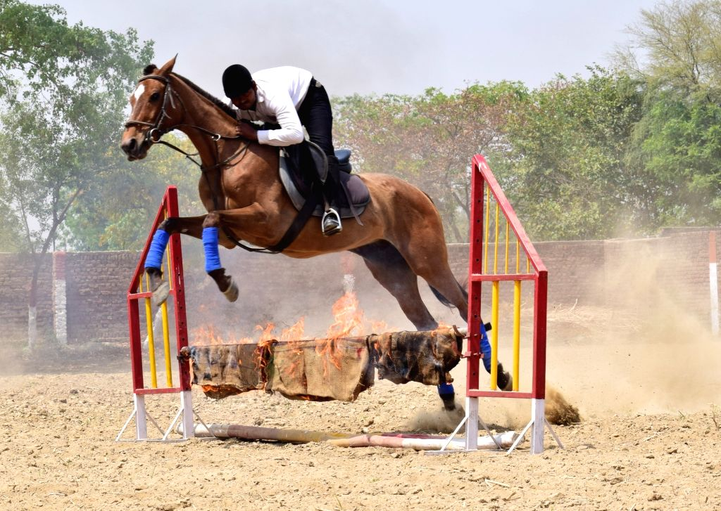 An equestrian demonstrates his skills at a Horse Riding Centre in Mathura on April 3, 2018.