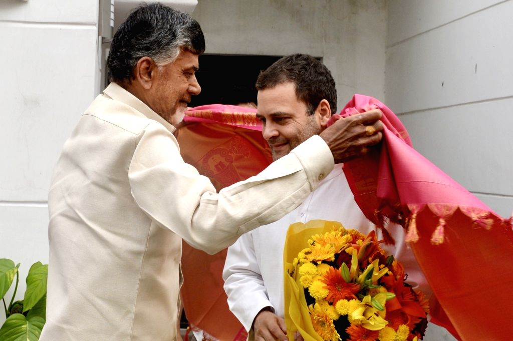 Andhra Pradesh Chief Minister and Telugu Desam Party (TDP) chief N. Chandrababu Naidu meets Congress president Rahul Gandhi at the laters residence in New Delhi on Nov. 1, 2018. - N. Chandrababu Naidu and Rahul Gandhi