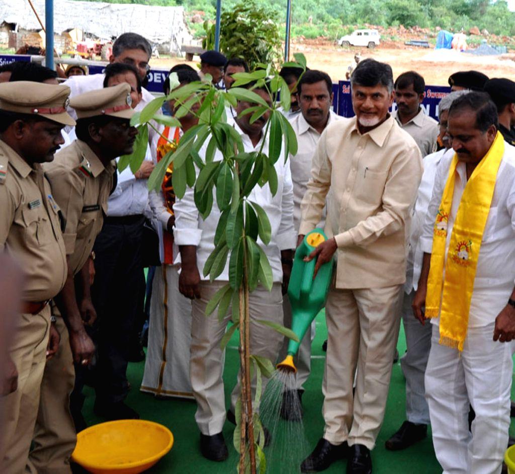 Andhra Pradesh Chief Minister N Chandrababu Naidu plants a sapling in Srisailam on July 18, 2016. - N Chandrababu Naidu