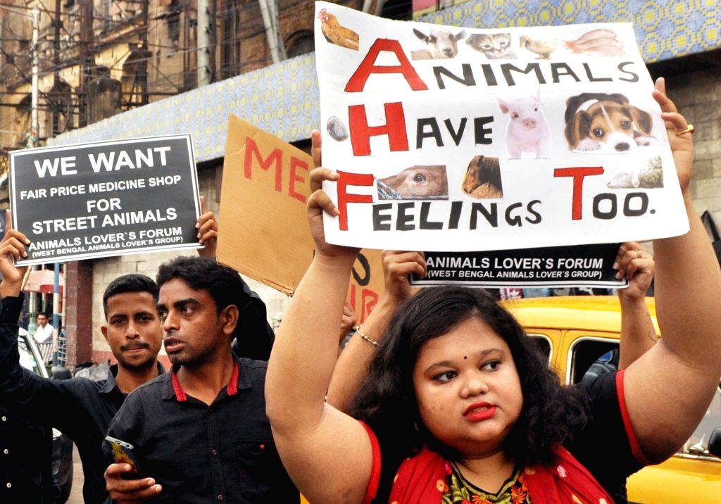 Animal Lovers Forum members participate in protest march to demand justice for animals in Kolkata on Nov 10, 2019.