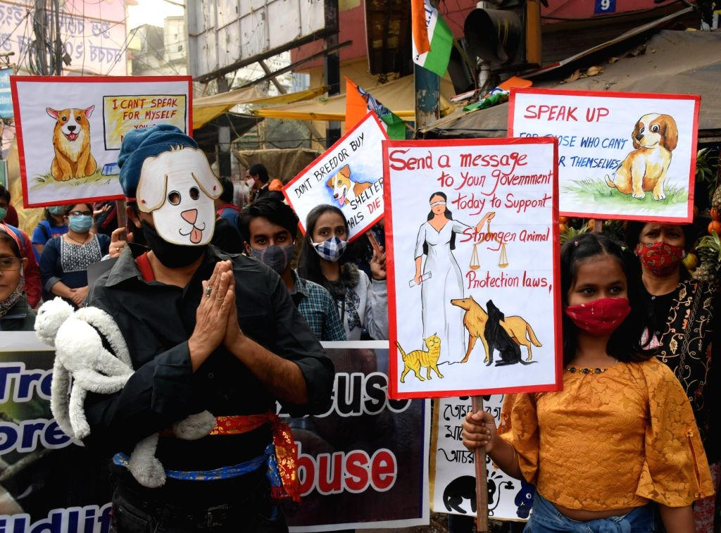 Animal lovers took part in a protest rally in Kolkata.