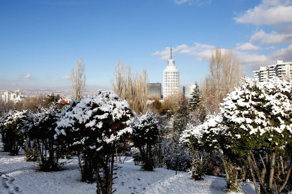 ANKARA, Dec. 13, 2018 - Buildings of a business district and snow-covered shrubs are seen in Ankara, Turkey, on Dec. 13, 2018.