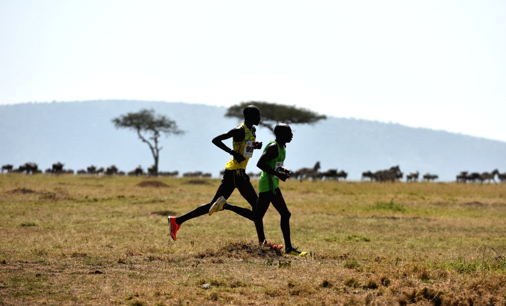 Athletes run during the Masai Mara Marathon in Masai Mara Game Reserve, Kenya, Aug. 15, 2015. Kenya held its 7th Masai Mara Marathon which is an event for public ...