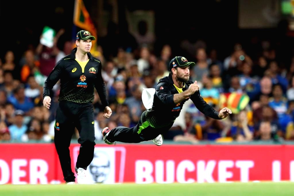 Australia's Steve Smith and Glenn Maxwell during 2nd T20I match between Sri Lanka and Australia at Brisbane Cricket Ground in Woolloongabba, Brisbane on Oct 30, 2019.