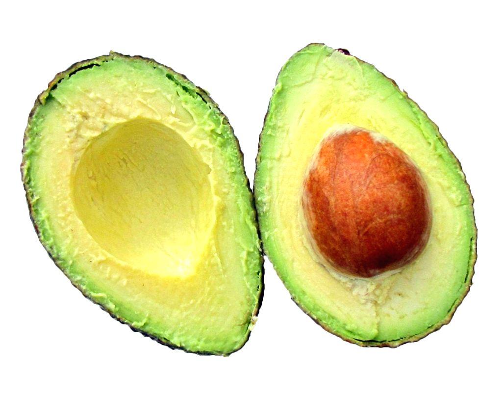 Avocado seed.