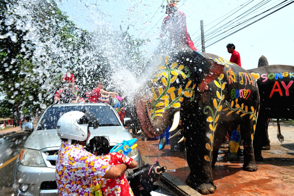 Elephants spray water to tourists during a celebration of the upcoming Songkran festival in Ayutthaya province, Thailand, April 10, 2015. Songkran, also known as ...