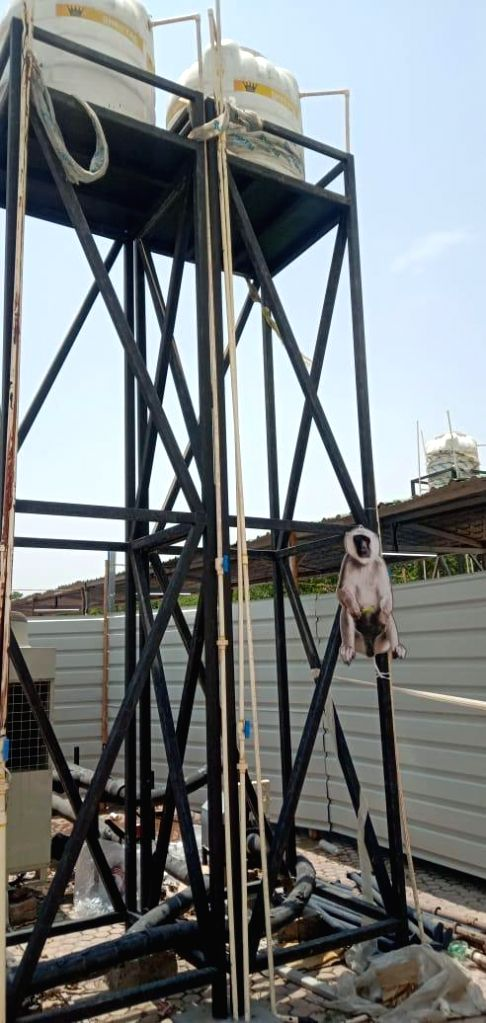 Baboon cutouts to counter monkey menace at India's largest Covid Centre.