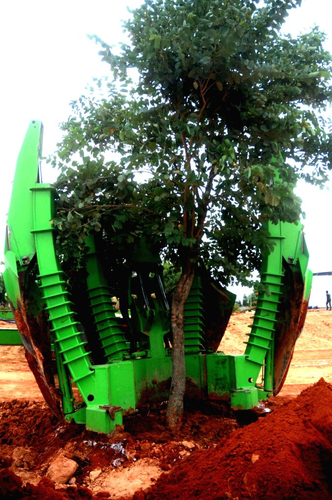 Bangalore International Airport Limited (BIAL) uses Tree Transplanter to transplant trees on World Environment Day at Kempegowda International Airport in Bengaluru on June 5, 2019.