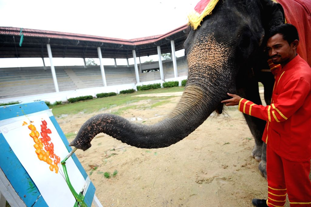 BANGKOK, Oct. 6, 2016 - Bunmee, a 22-year-old male elephant, draws a water color painting by his trunk at a zoo in suburban Bangkok, Thailand, Oct. 6, 2016.