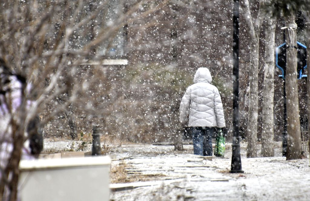 BEIJING, Feb. 12, 2019 - A citizen walks in snow in Beijing, capital of China, Feb. 12, 2019. A snowfall hit Beijing on Tuesday.