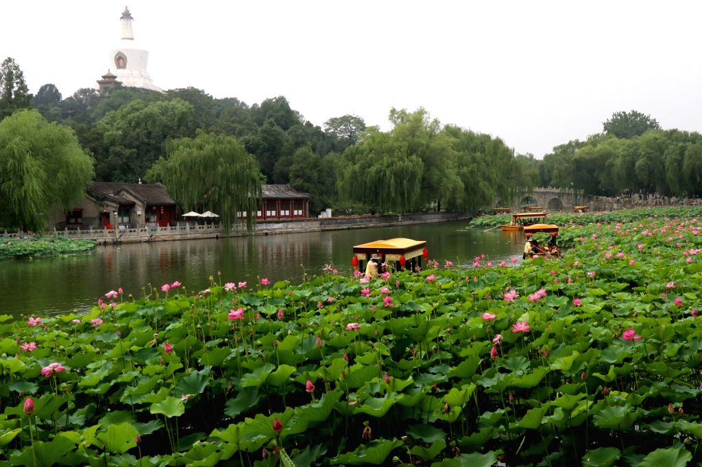 BEIJING, July 5, 2017 - Tourists take sightseeing boats to view lotus flowers at Beihai Park in Beijing, capital of China, July 4, 2017.