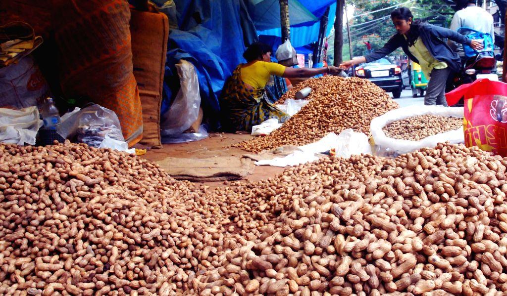 A lady sells groundnuts ahead of Kadlekai Parishe (groundnut festival) at Basavanagudi, in Bengaluru on Nov 16, 2014.