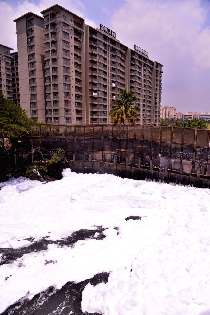 Bengaluru: A view of toxic foam floats over Bellandur Lake, in Bengaluru on Sept 25, 2018. (Photo: IANS)