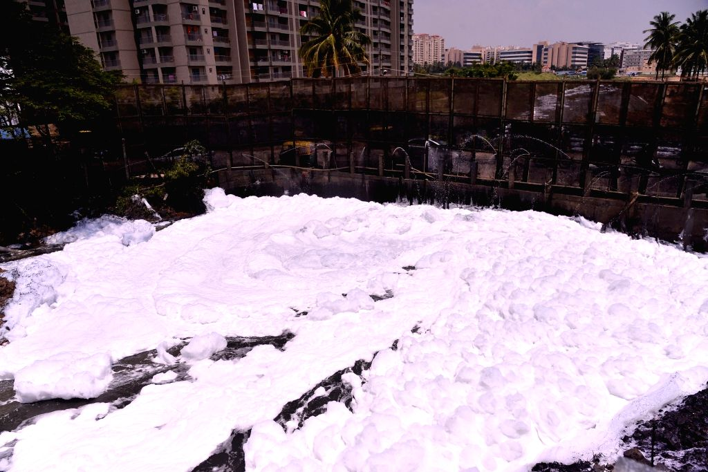 Bengaluru: A view of toxic foam floats over Bellandur Lake, in Bengaluru on Sept 25, 2018. (Photo: IANS)