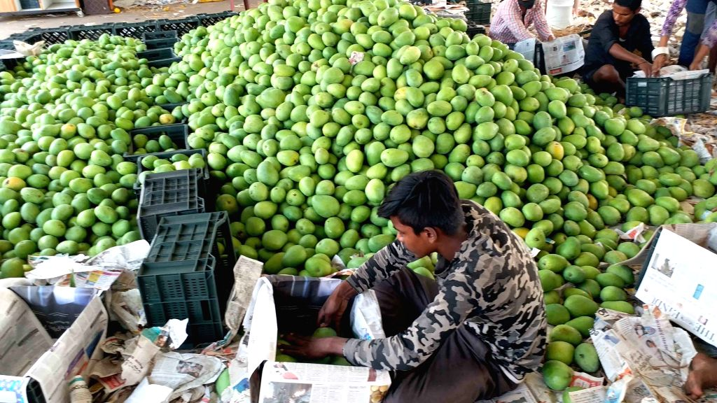 Bengaluru, May 26 (IANS) Karnataka farmers are teaming up with e-commerce major Flipkart for the home delivery of mangoes, an official said on Tuesday.