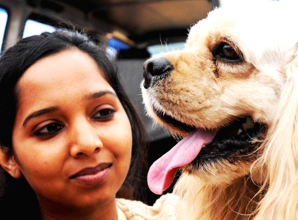 People with their pets during a Dog Show organised by Mysore Kennel Club Bengaluru on Jan 11, 2015.