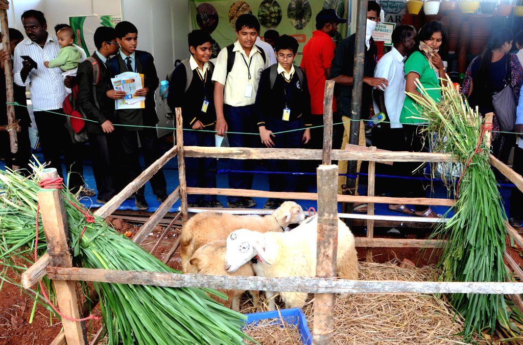 Visitors at Krishi Mela - 2014 organised by University of Agricultural Sciences at Gandhi Krishi Vignayana Kendra(GKVK), in Bengaluru on Nov 19, 2014.