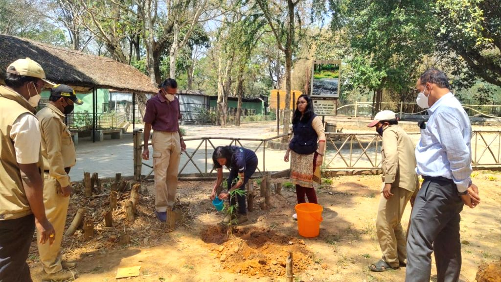 Bengaluru zoo celebrates World Wildlife Day by planting