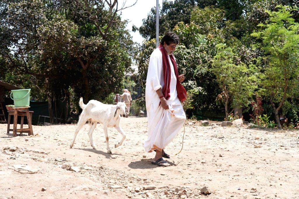 Big B 'walks' goat after Twitter banter with SRK. (Photo: Twitter/@SrBachchan)