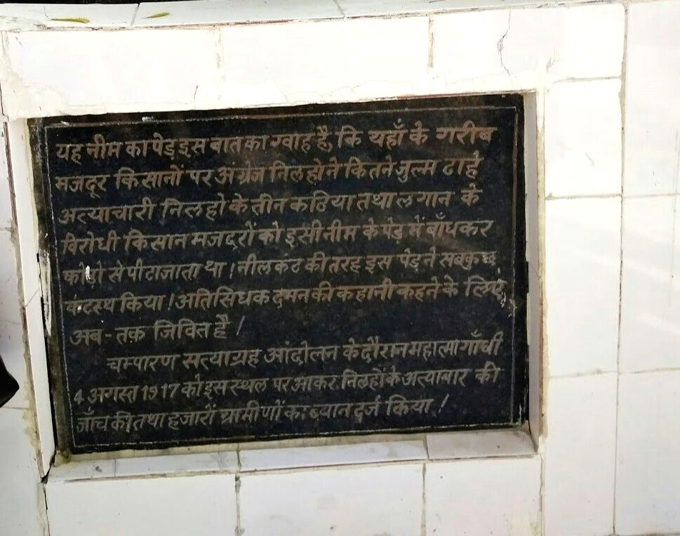 Bihar's Champaran has many memories associated with Mahatma Gandhi. One such memory is a neem tree in East Champaran district which is  associated with Gandhi's visit to the district. Situated at the ...