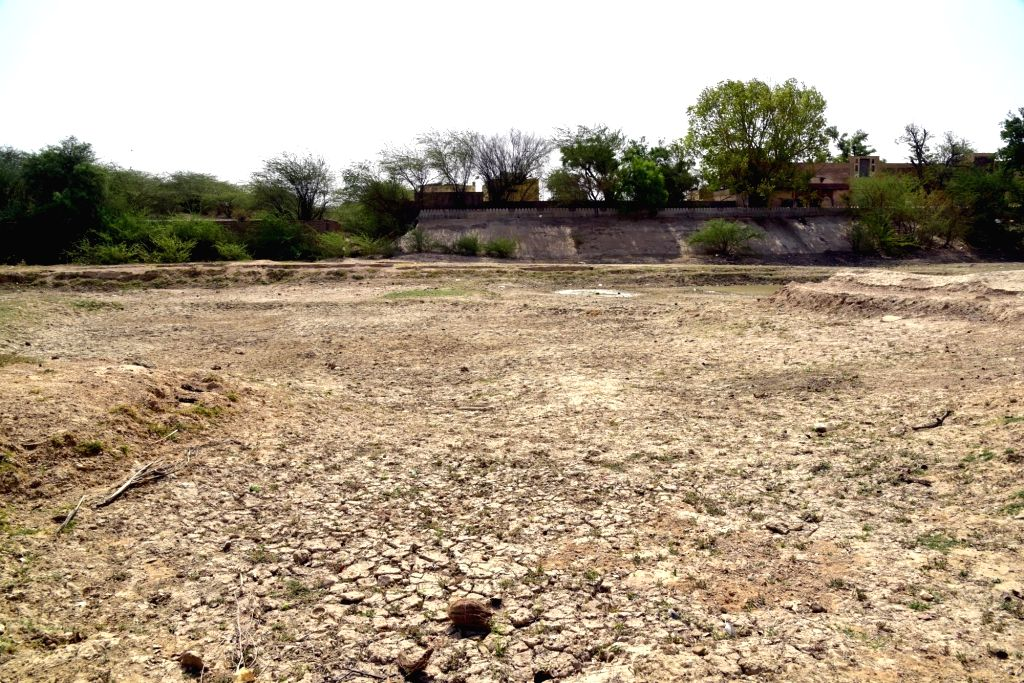 Bikaner: The Devi Kund Sagar lake runs dry due to rising temperatures in Bikaner, Rajasthan on June 11, 2019. (Photo: IANS)