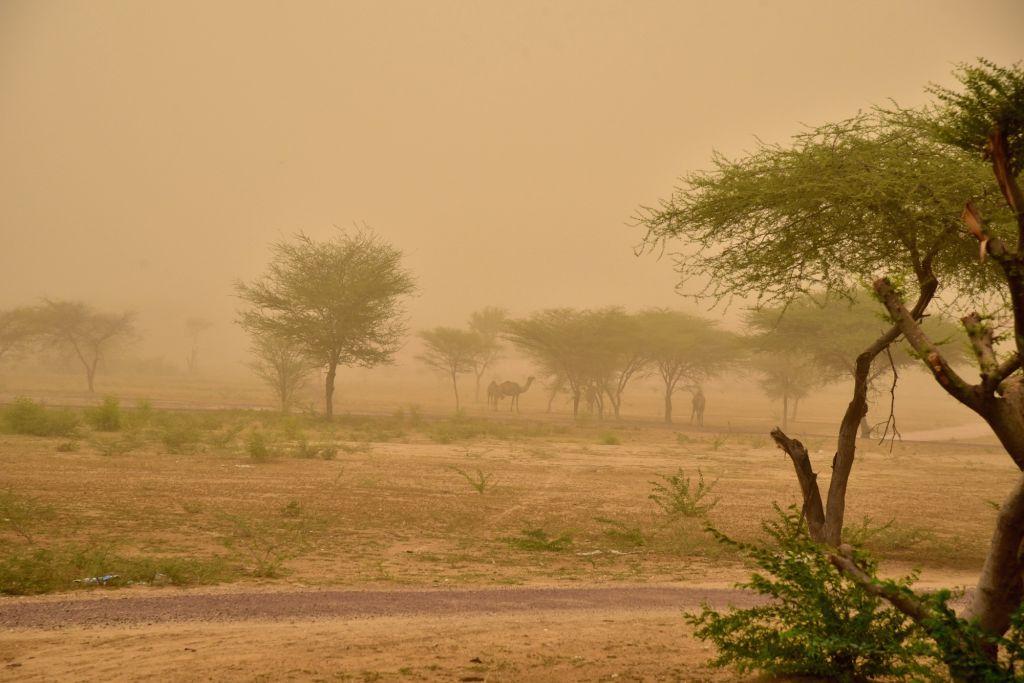 Bikaner witnesses dust storm, on July 19, 2019.