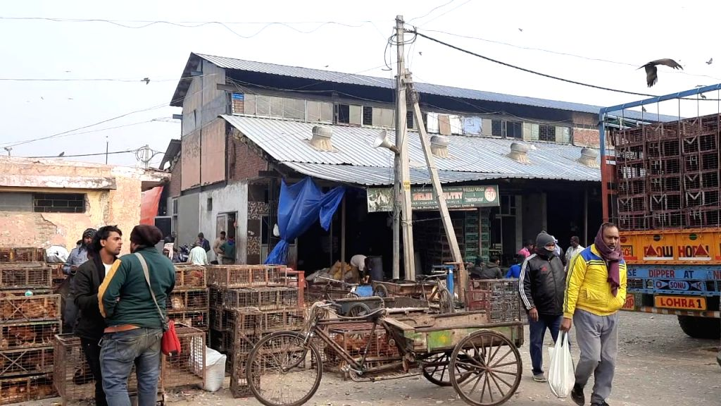 Bird flu: loss of crores of rupees in business due to Ghazipur mandi bandh.