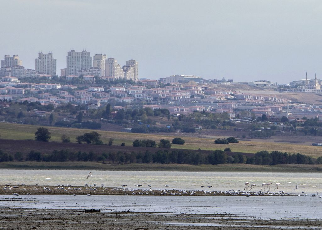 Birds are seen on the Buyukcekmece lake with exposed lake bed in Istanbul, Turkey, Sept. 21, 2020. Turkey's giant metropolis Istanbul has been trying to cope with ...