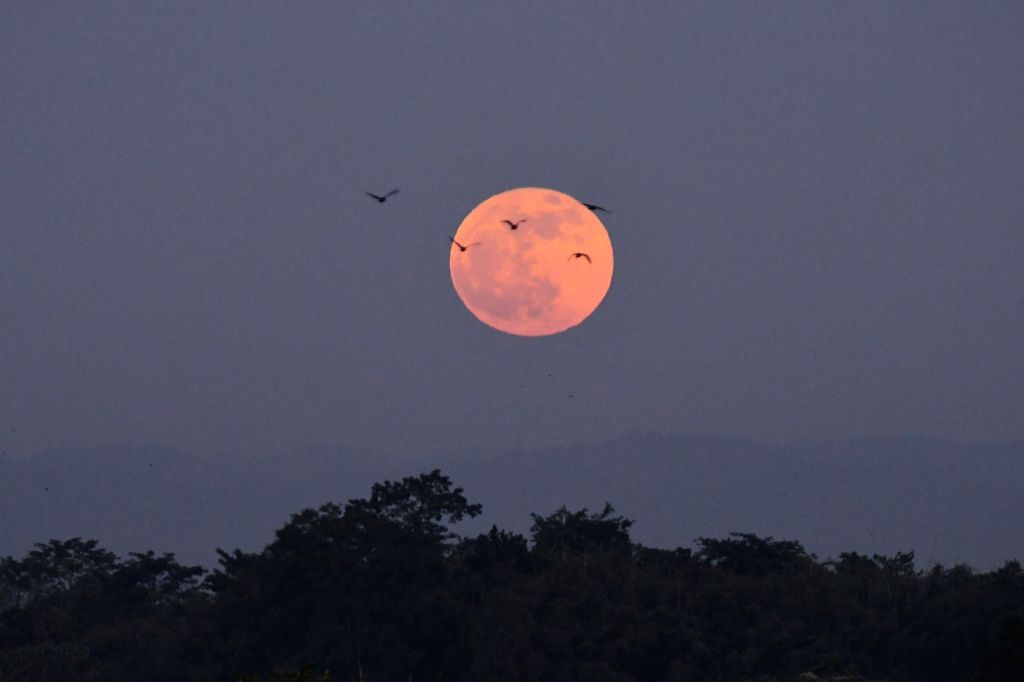 Birds fly past the full moon seen in the skies of Assam's Nagaon district on Kartik Purnima, on Nov 30, 2020.