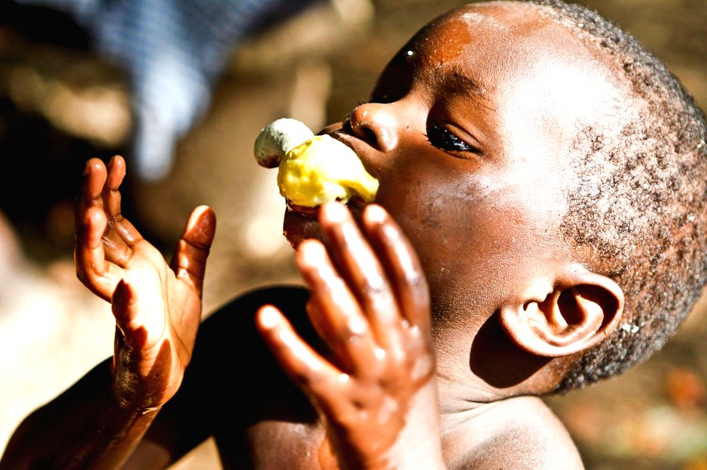 A boy eats cashew fruit at the suburb of Bissau, capital of Guinea Bissau, April 16, 2014. Guinea Bissau is the fifth biggest country of exporting cashew nuts in ...