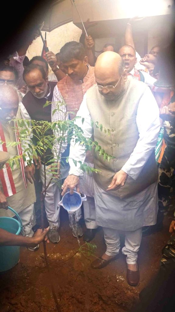 BJP chief Amit Shah plants a sapling at party office in Hyderabad on Sept 17, 2016. - Amit Shah