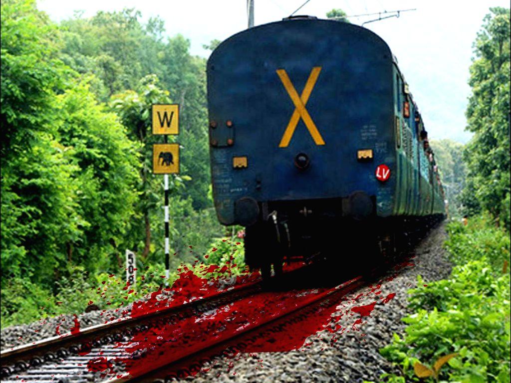 Blood on railway tracks.