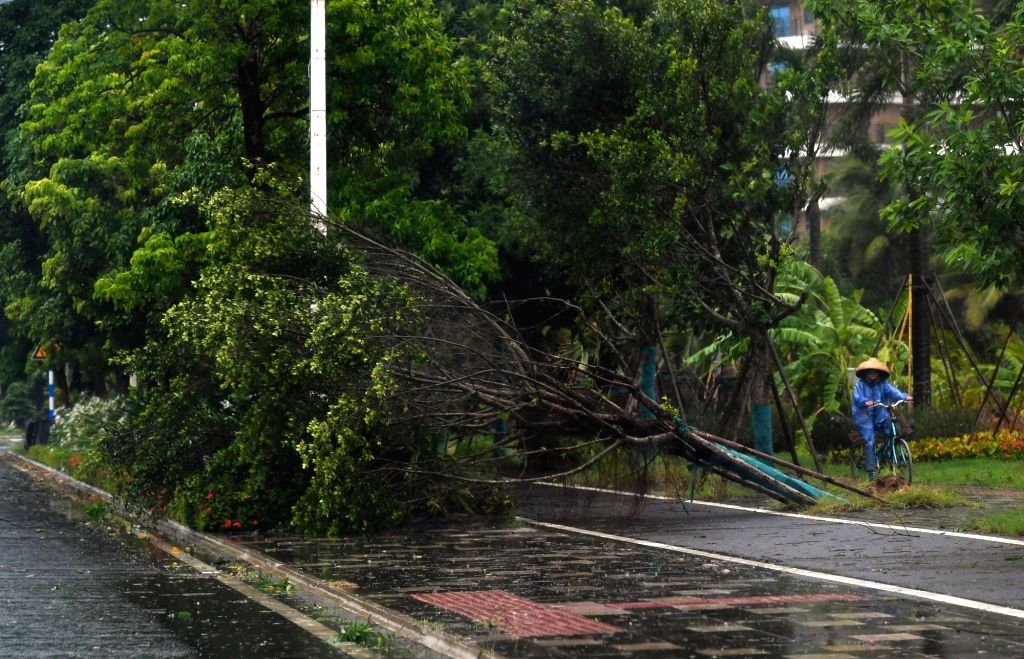 BOAO, July 18, 2018 - A resident rides a bike passing by a tree blown down by strong wind caused by Typhoon Son-Tinh in Boao Town, Qionghai City, south China's Hainan Province, July 18, 2018. ...