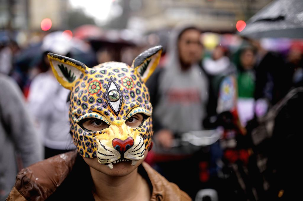 A resident takes part in a protest against the decision of allowing the return of bullfights, in Bogota city, Colombia, on Feb. 8, 2015. The Constitutional Court ...