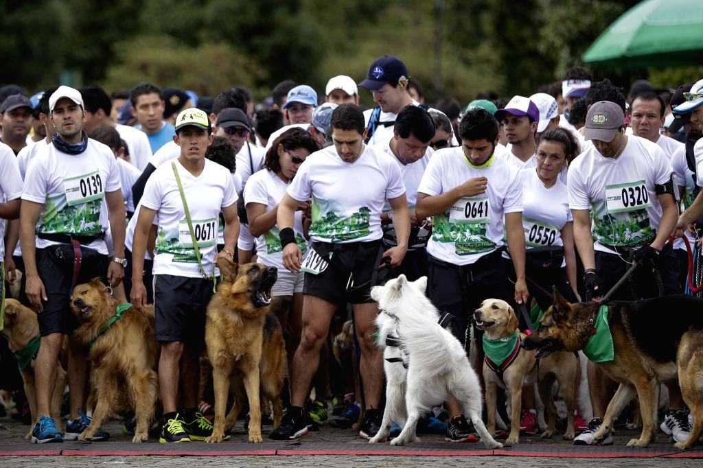 """Residents prepare to start with their dogs during the """"Pet Run"""" race at Simon Bolivar park, in the city of Bogota, Colombia, on May 17, 2015.  ..."""