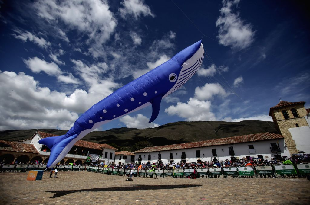 BOYACA, Aug. 21, 2017 - Photo taken on Aug. 20, 2017 shows a whale-shaped kite during the Wind and Kites Festival in Villa de Leyva, in Boyaca, Colombia.