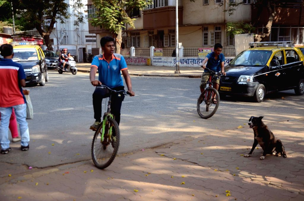 Boys seen cycling in Mumbai, on June 3, 2019. June 3 was declared as World Bicycle Day by the United Nations General Assembly in April 2018.