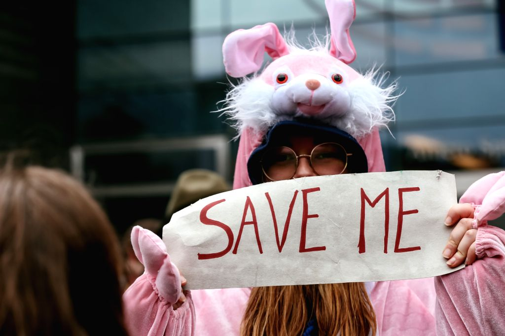 """BRUSSELS, Jan. 27, 2019 - A girl dressed like a rabbit attends a climate march in Brussels, Belgium, Jan. 27, 2019.  Brussels saw a massive march called """"Rise for Climate"""" on Sunday, as ..."""