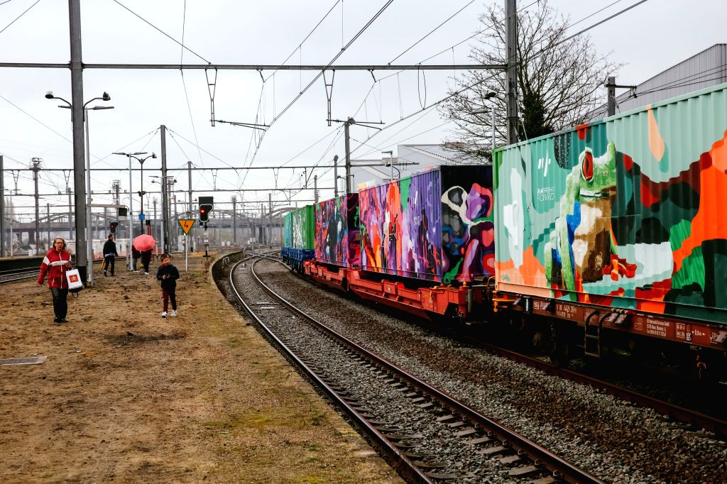 BRUSSELS, March 3, 2019 - People view Noah's Train at Schaerbeek Station in Brussels, Belgium, March 2, 2019. Noah's Train, a freight train painted with colorful animals, has recently arrived at ...