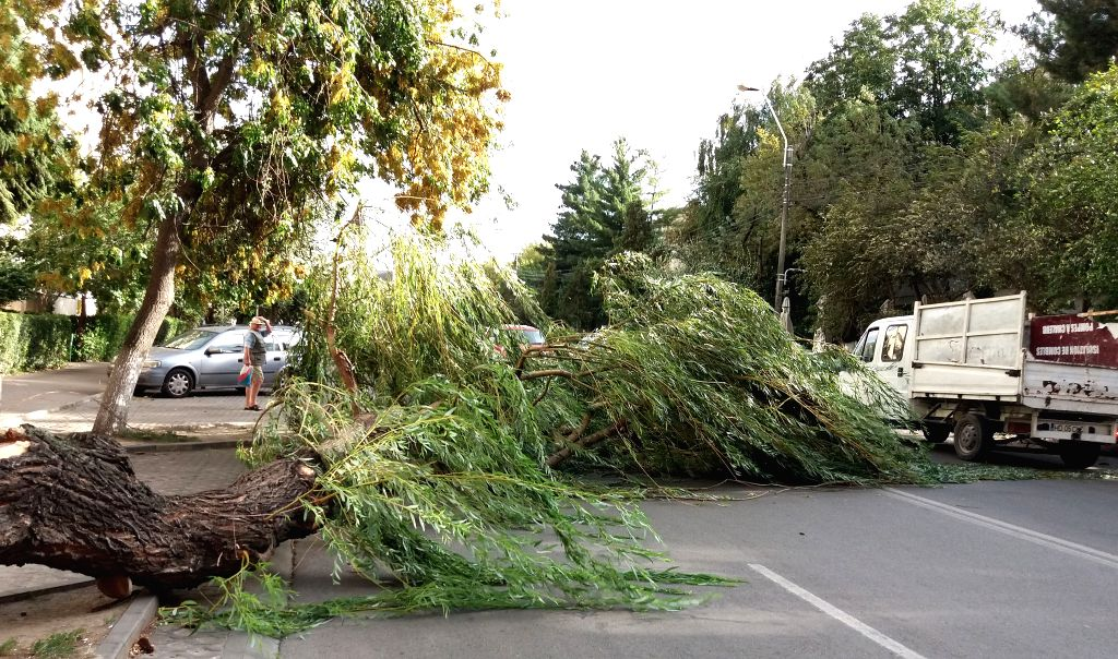 BUCHAREST, Sept. 18, 2017 - A man walks near a fallen tree in Deva, Romania, Sept. 17, 2017, following a deadly storm that affects the west part of the country.