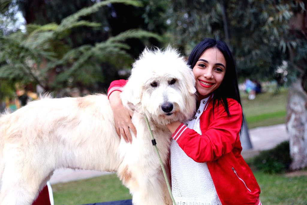 CAIRO, Dec. 7, 2019 - A girl poses with a dog during a pet carnival in Cairo, Egypt, on Dec. 6, 2019. Held at the garden of Cairo's Child Center for Civilization and Creativity, Aleef 4th Open Air ...