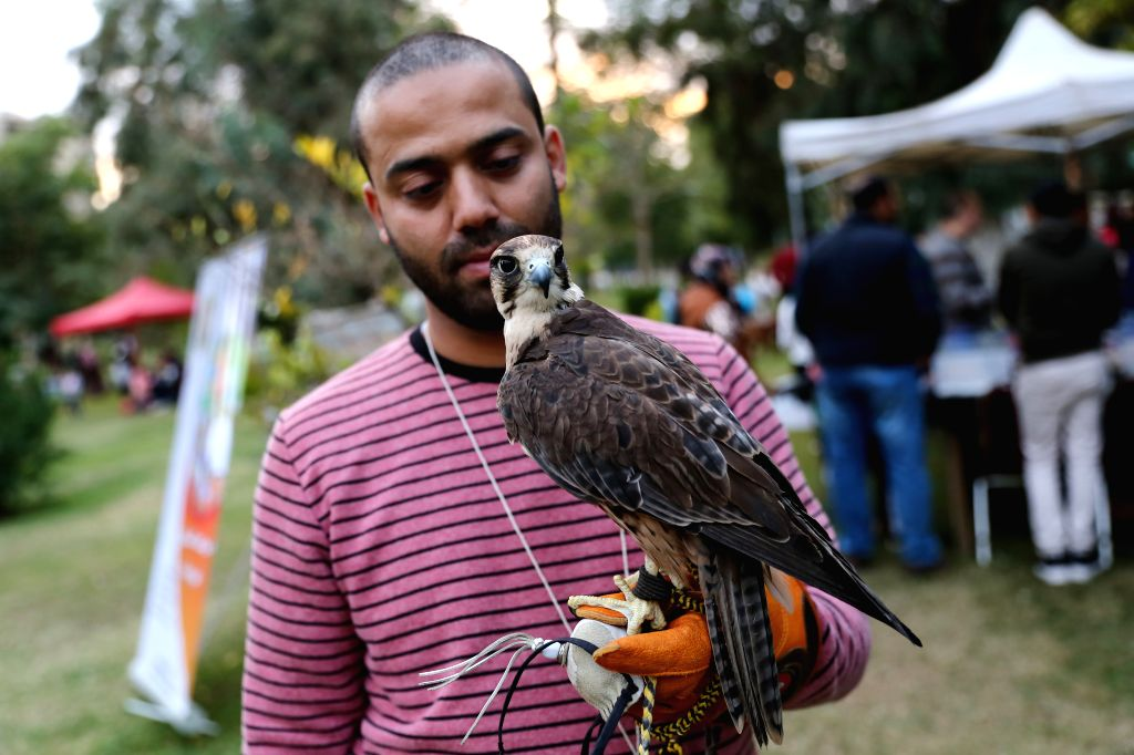 CAIRO, Dec. 7, 2019 - A man shows a falcon during a pet carnival in Cairo, Egypt, on Dec. 6, 2019. Held at the garden of Cairo's Child Center for Civilization and Creativity, Aleef 4th Open Air Pets ...