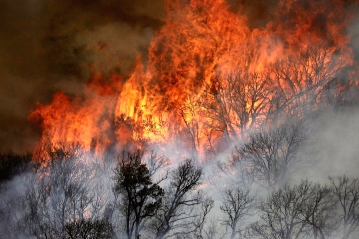 California wildfires: Gusty winds may drive flames into extremity. (Xinhua/IANS)