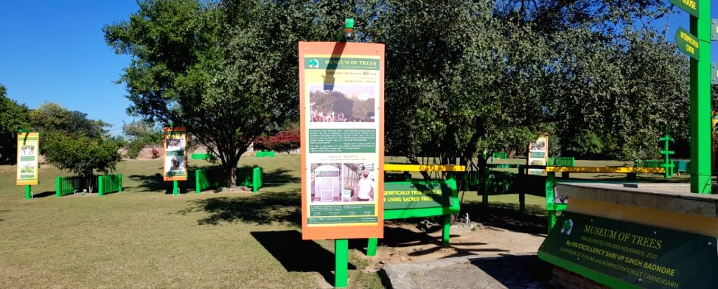 Chandigarh to get another landmark -- Museum of Trees.