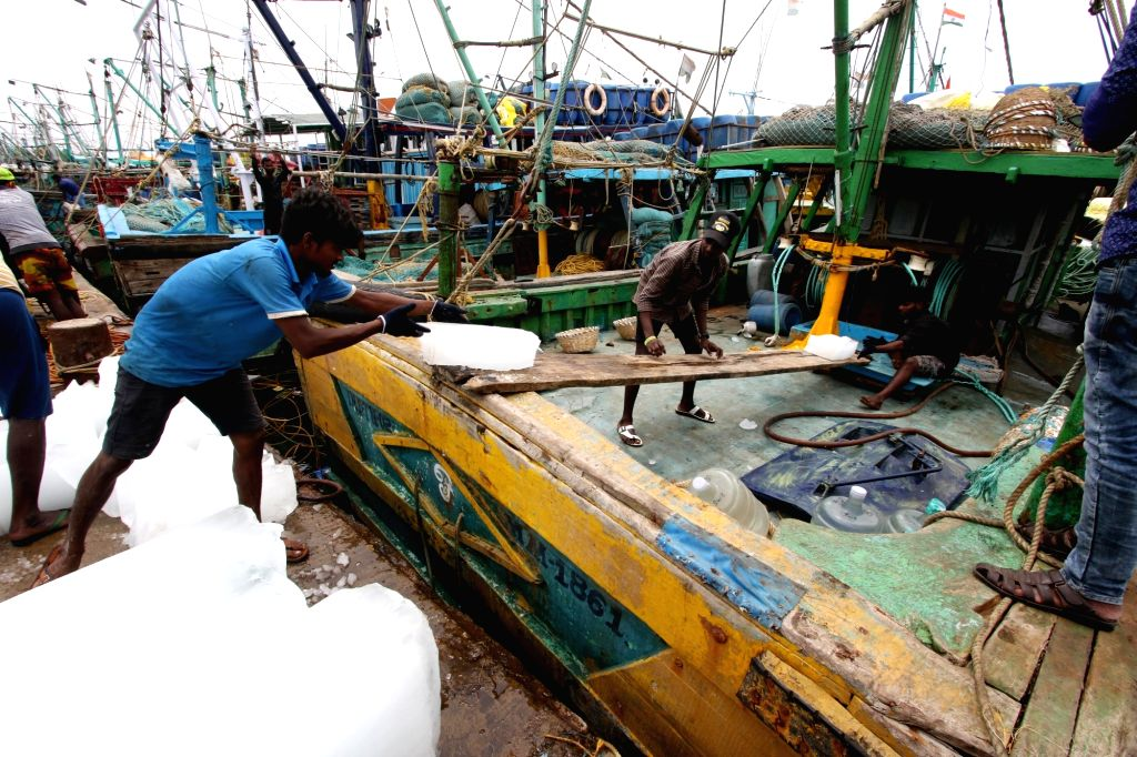 Chennai : The fishing ban in Tamilnadu is lifted from today hence the fishermen get ready for fishing from tomorrow in Chennai on Monday  14 June, 2021.