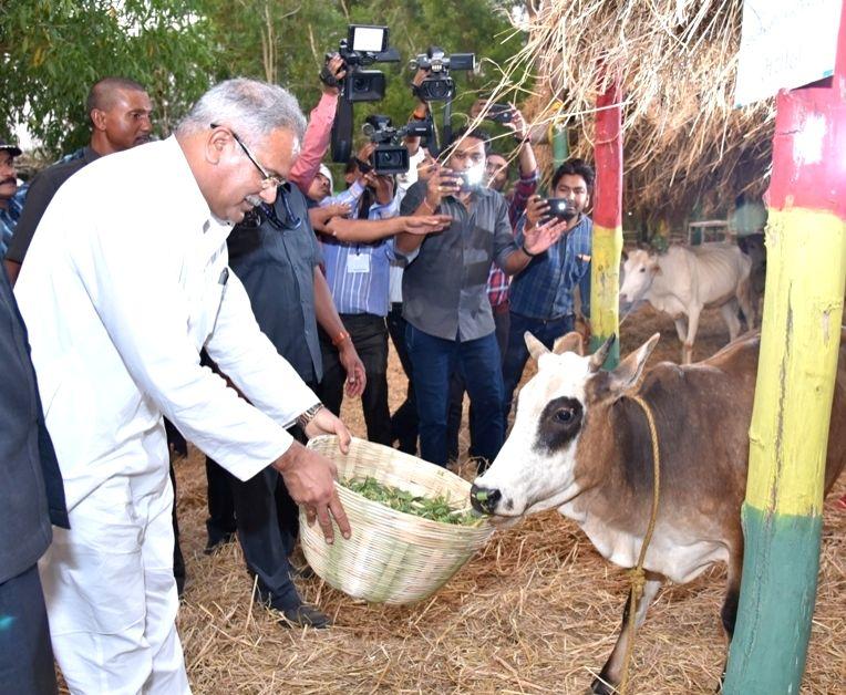 Chhattisgarh Chief Minister Bhupesh Baghel. - Bhupesh Baghel