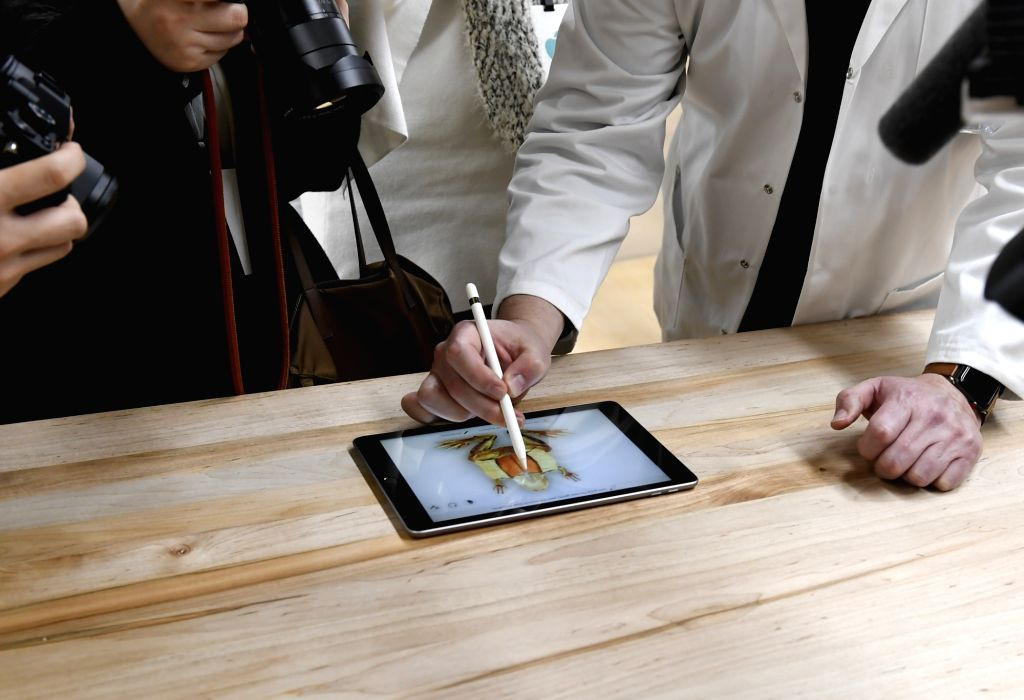 CHICAGO, March 28, 2018 - A customer experiences a new iPad in Chicago, the United States, on March 27, 2018. Apple on Tuesday introduced a new iPad with a digital pencil to draw and write plus ...