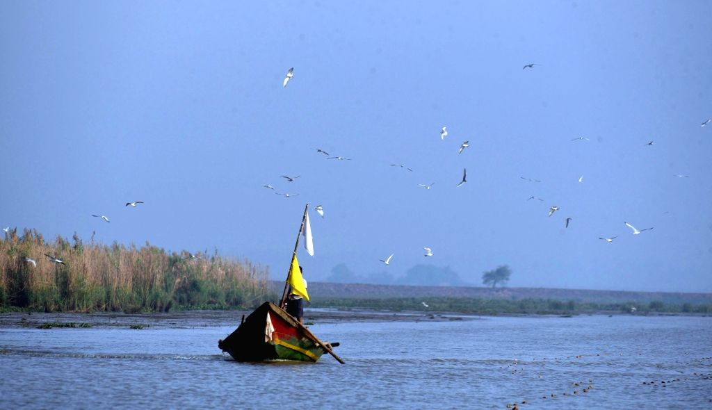 Chilika Lake. (File Photo: IANS)
